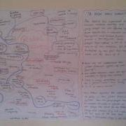 Mind map created by the YAG looking at interconnectedness of social justice and global issues